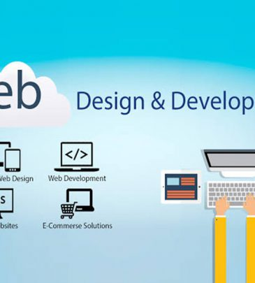 Website Design & Development Course