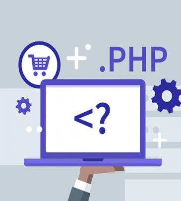 PHP with WordPress